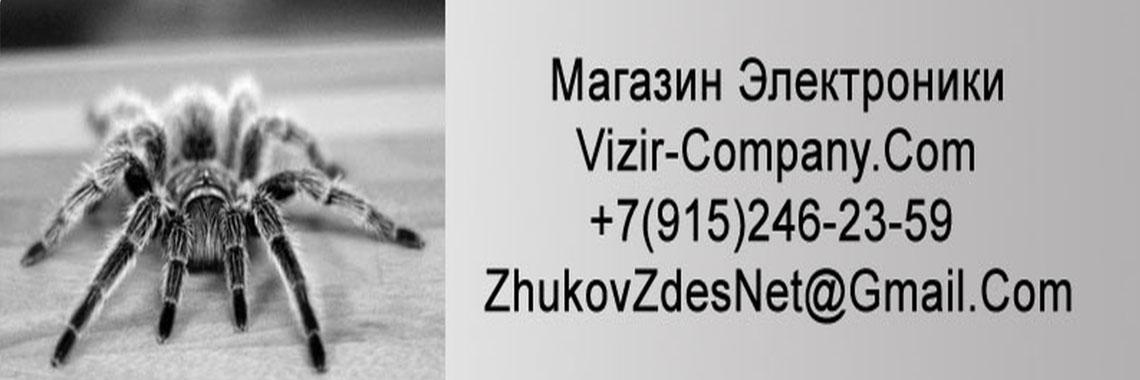Интернет-магазин Визир